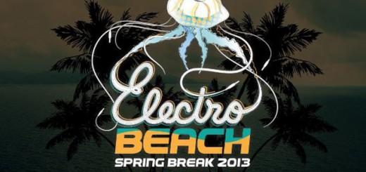 electro-beach-2013-header