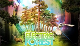 electric-forest-2013-header