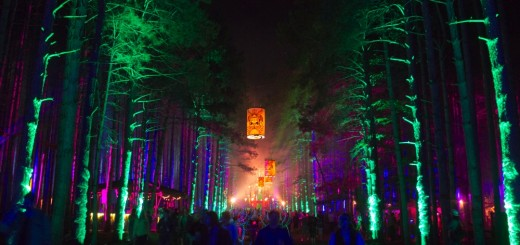 Electric Forest 2013 day 1-16