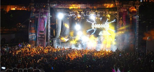Dancefestopia 2013 crowd