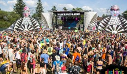 Electric Forest Tripolee 2014