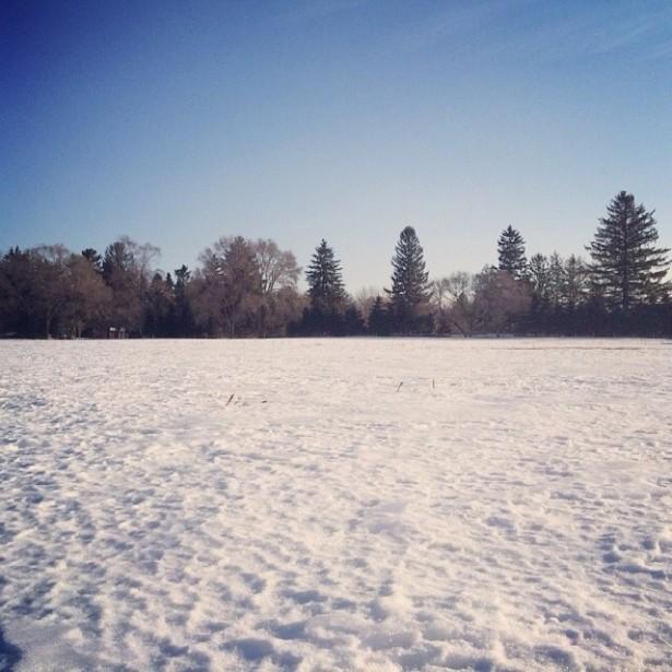 Electric Forest Snowy Walkthrough 3