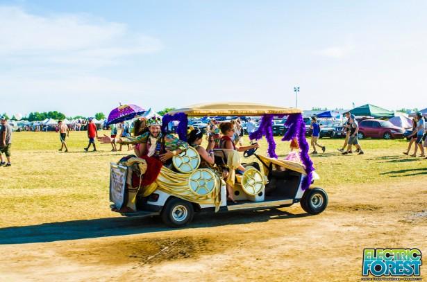 LiaHolland-kingqueen-cart